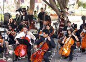 Clases de violoncello a domicilio $ accesible