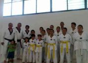 Instituto de taekwondo revolucion jalisco central