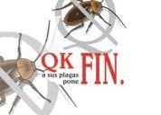 Fumigaciones economicas seria y 100% garantizadas www.qkfin.com.mx