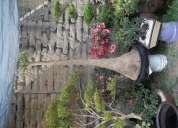 Servicio de mantenimiento de jardines y vivero mejia.