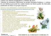 Curso herbolaria y farmacia natural guadalajara 2010