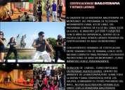 Certificacion y diplomado de bailoterapia y ritmos latinos