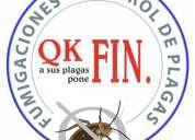 Certificados de fumigacion empresa lider en control de plaga www.qkfin.com.mx