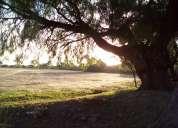 4 hectareas escrituradas cerca central de abasto y ganado actopan