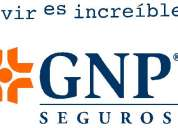 Consultor elite gnp