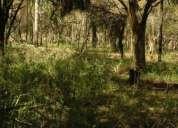 Vendo terreno xalapa