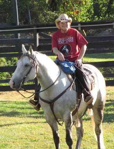 Caballos Cuarto Milla - haras guindalero caballos cuarto de milla ...