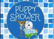 Puppy shower estetica canina a tu puerta