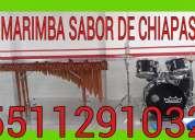 Animamos tu fiesta con musica de marimba 60013885