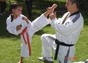 Profesor de taekwondo