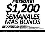 """Promotoras (es) """"xalapa"""""""