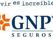 Grupo nacional provincial (gnp seguros), te ofrece una excelente oportunidad.