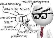 Programador o webmaster
