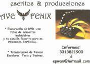 Escritos y producciones ave fenix
