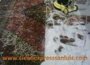 Clean express san luis, servicios especializados en limpieza.