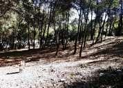 Desarrollo residencial quinta del bosque