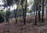 Se vende terreno alamo temapache, veracruz.centro