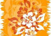 Clases danzas polinesias: hawaiano y tahitiano