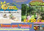 Curso rig pass en tampico tamaulipas