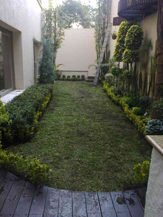 mantenimiento de jardines y venta