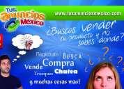 Anuncios gratis chihuahua