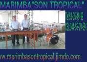 Contrata marimba en cuautitlan 53-05-49-99