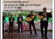 Mariachis urgentes en alvaro obregon 66086860 mariachis df