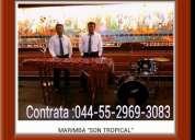 Llama ya 55_2969-3083 marimba en atizapan